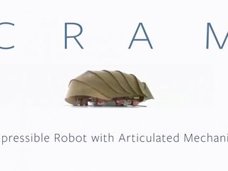 Researchers create roach-inspired robot