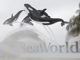 SeaWorld cuts 350 jobs
